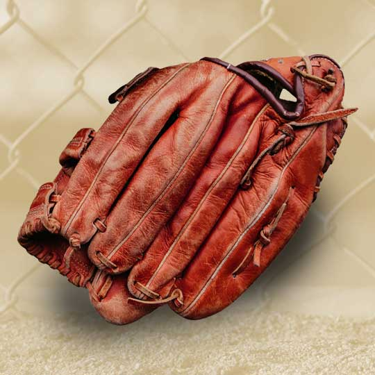 Glove Conditioning Service